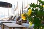 Aquarella Beach Bar 17